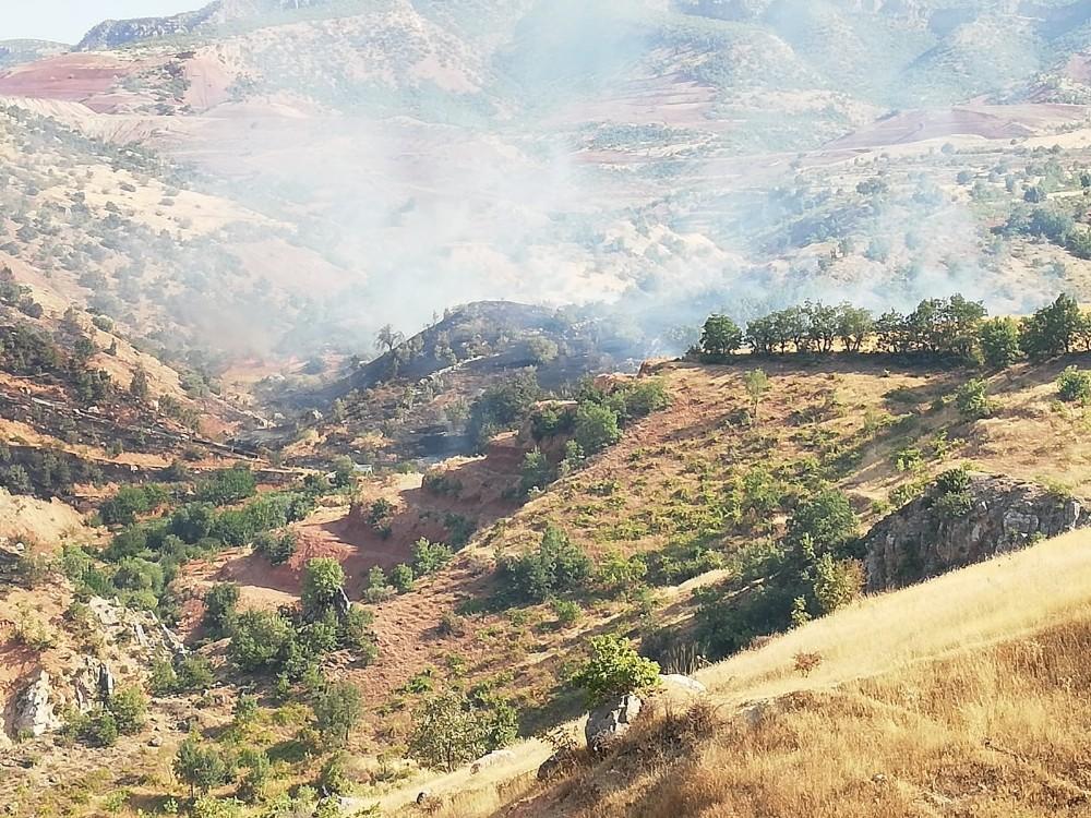 Siirt'te fıstık bahçelerinde yangın