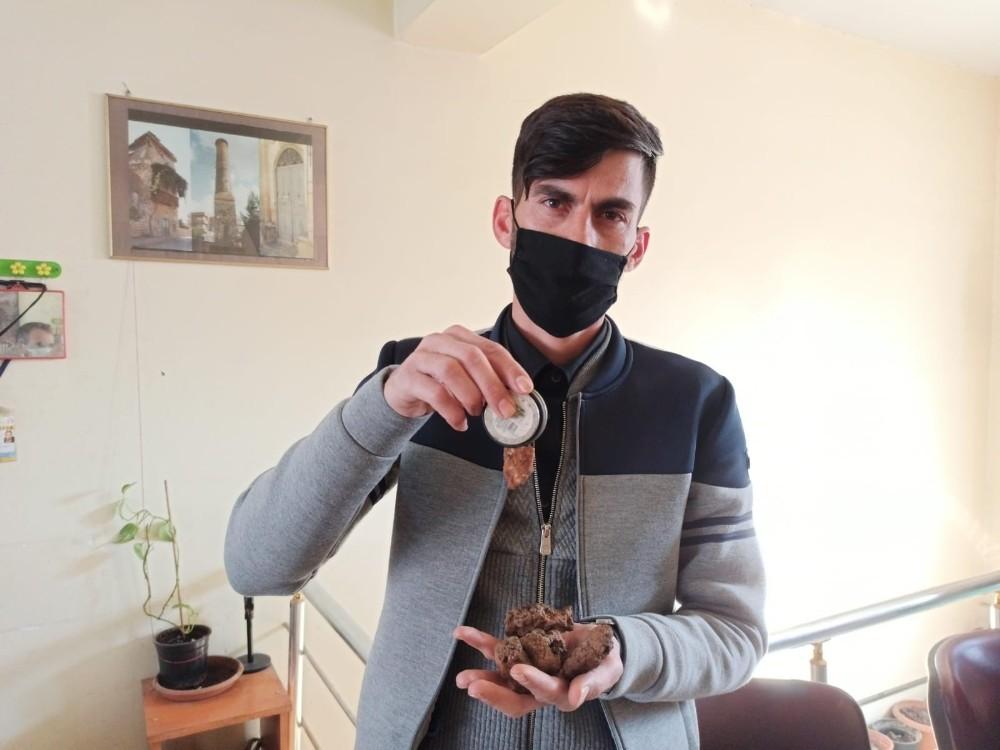 Siirt'te bir kişi, tarlasında bulduğu taşları 50 bin dolardan satışa çıkardı