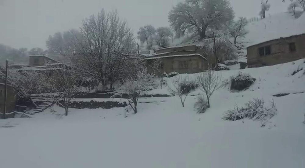 Şirvan yağan kar ile beyaza büründü