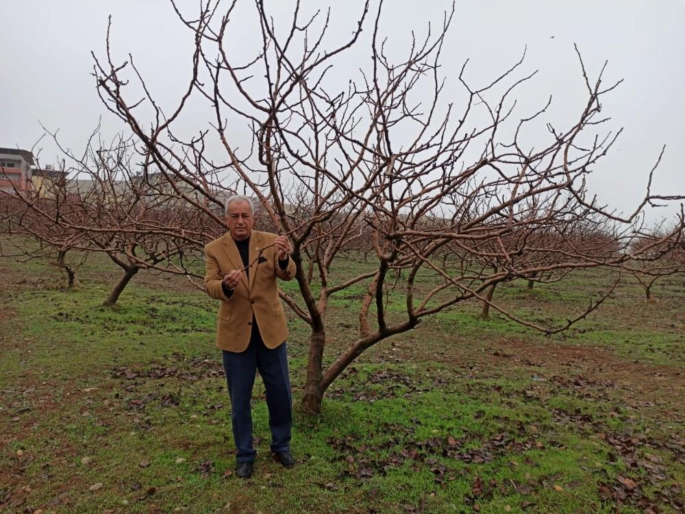 Siirt'te beklenen yağışların gelmesi çiftçilerin yüzünü güldürdü