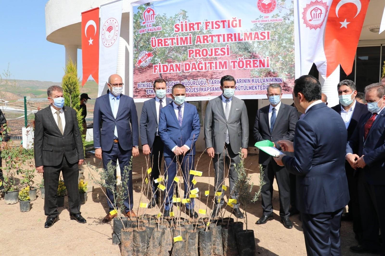 Siirt'te 4 bin dekar fıstık bahçesi tesis edilecek
