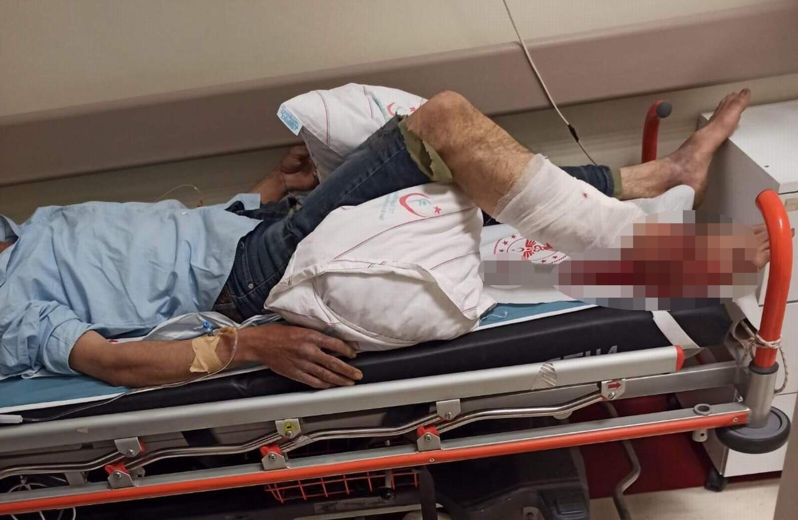 Siirt'te ayının saldırısına uğrayan çoban yaralandı