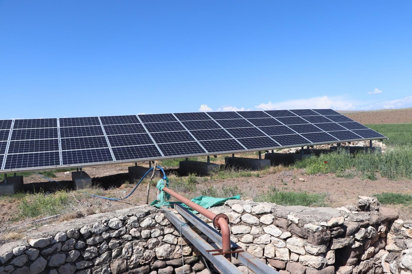 Tarlasına kurduğu güneş paneli sayesinde ekinlerini kuraklıktan korudu