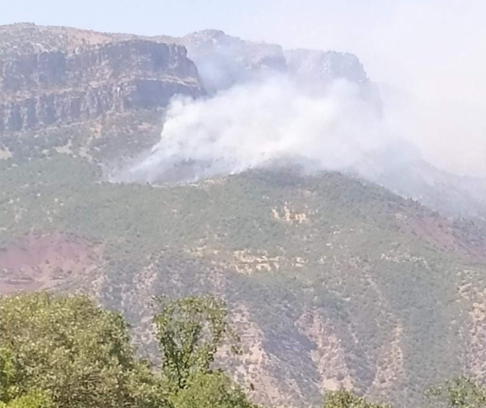 Siirt'te orman yangını